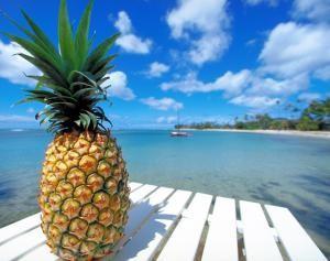 ananas-1326997-danielmenapace_0